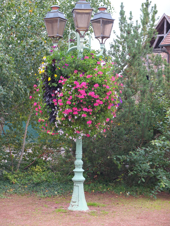 Blumenlaterne