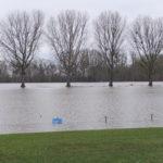 Hochwasser am Rappenwörth