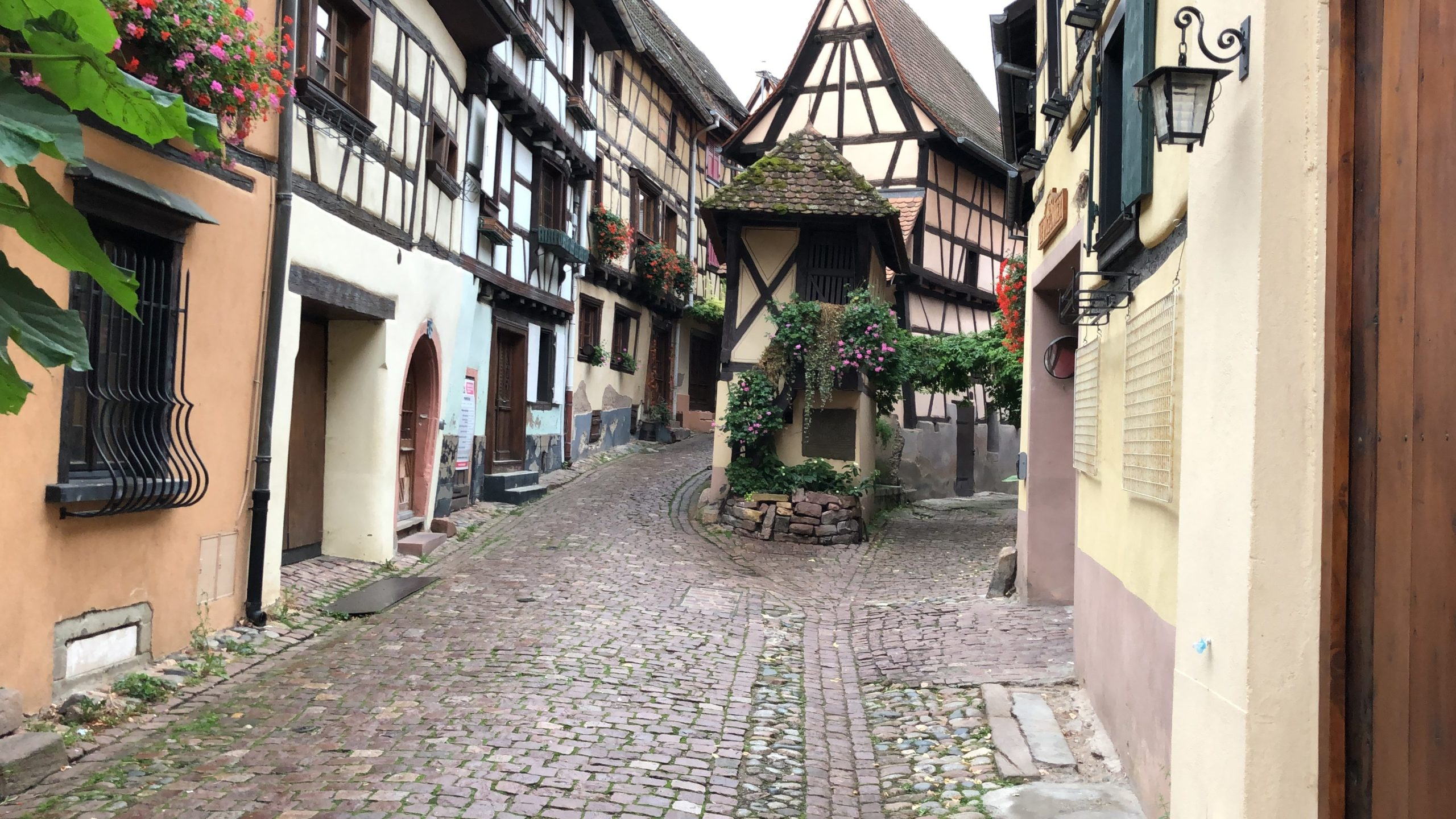 Gabelung in Eguisheim